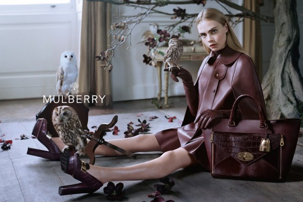 mulberry-fall2